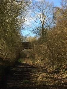 Approaching the bridge.