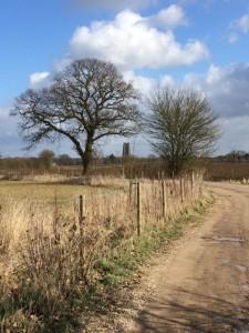 View to Lavenham Church.